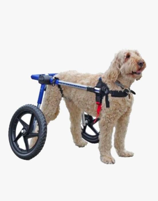 Rollwagen für Hunde - klein
